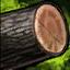 Hard Wood Log