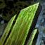 Éclat verdoyant